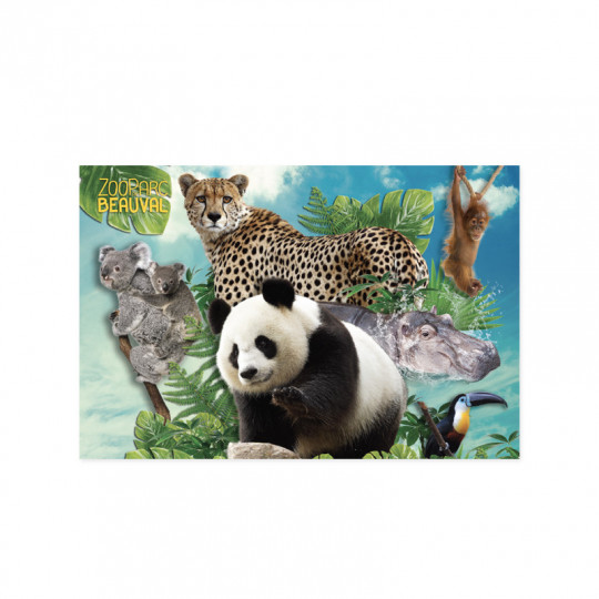 Carte postale multi animaux 2018
