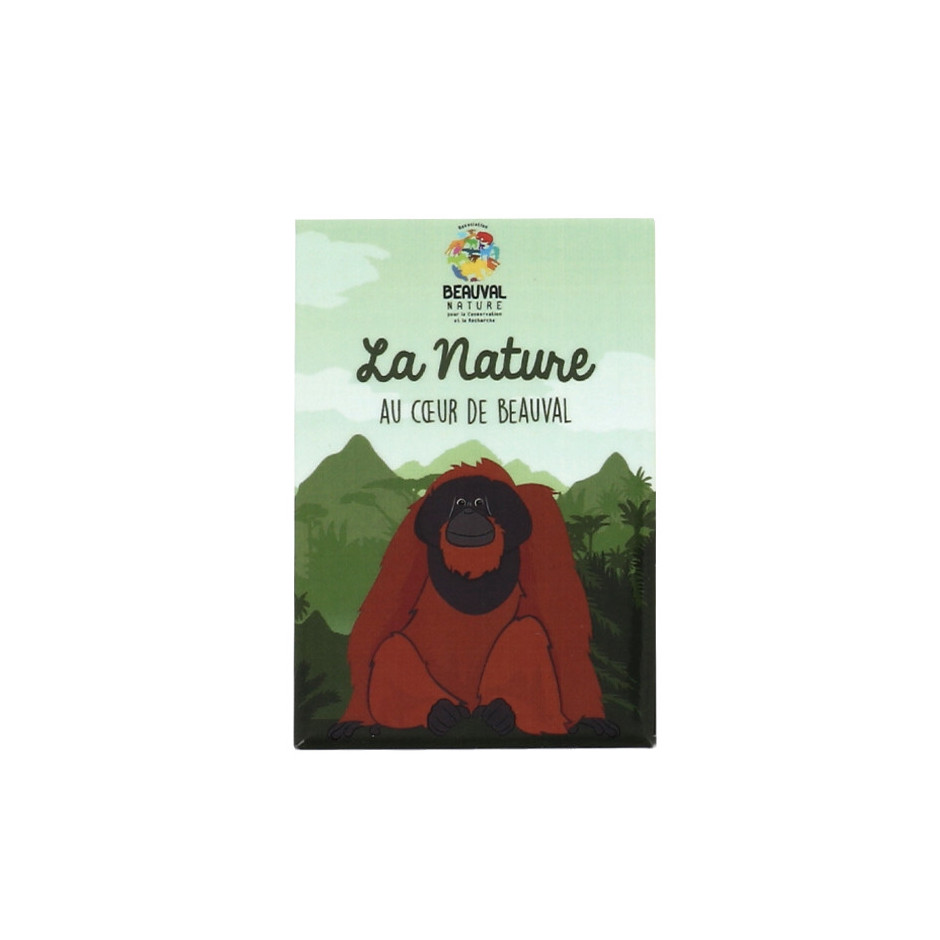 Magnet orang-outan Beauval Nature