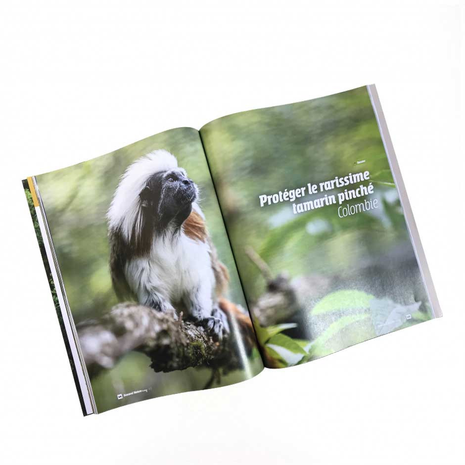 Beauval Nature mag n°3