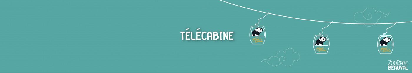 Télécabine