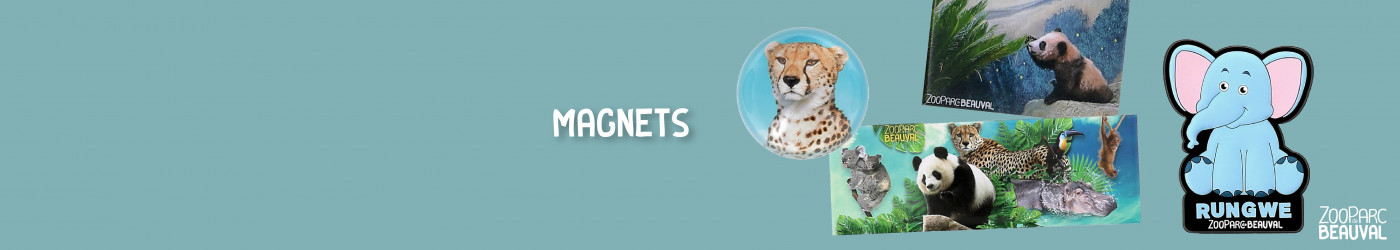 Magnets}