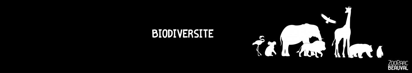 Biodiversité}
