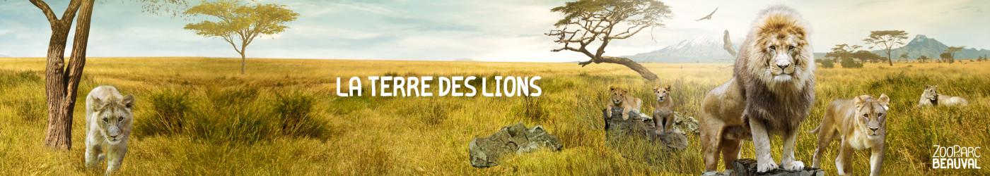 Terre des Lions}