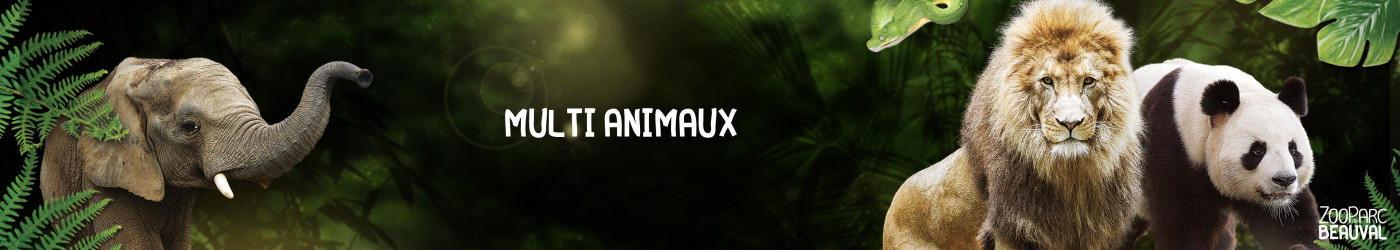 Multi animaux}