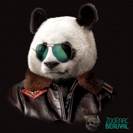 Panda Aviateur